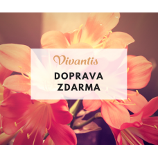 Vivantis_DOPRAVA ZDARMA pouze do 15.11.!