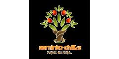 Semínka-chilli.cz